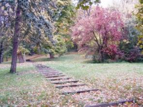 Maradjunk egészségesek ősszel is!