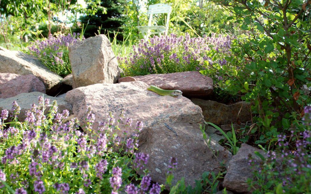 Fontos – de nem biztos, hogy kellemes – tudnivalók a kertedről
