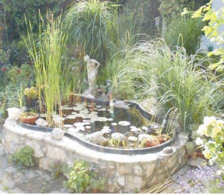 Fontos, hogy jó helyen legyen a kerti tó