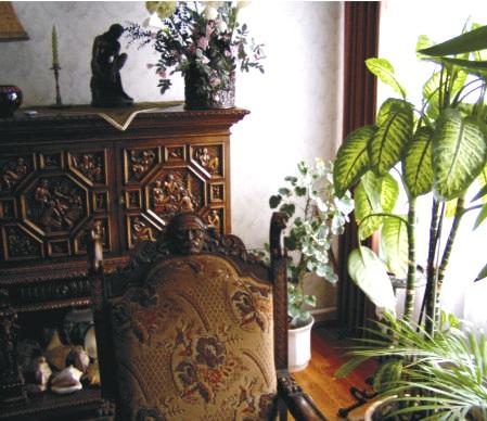 A barnás árnyalatok és a nyagy növények nagyon jók délnyugaton.