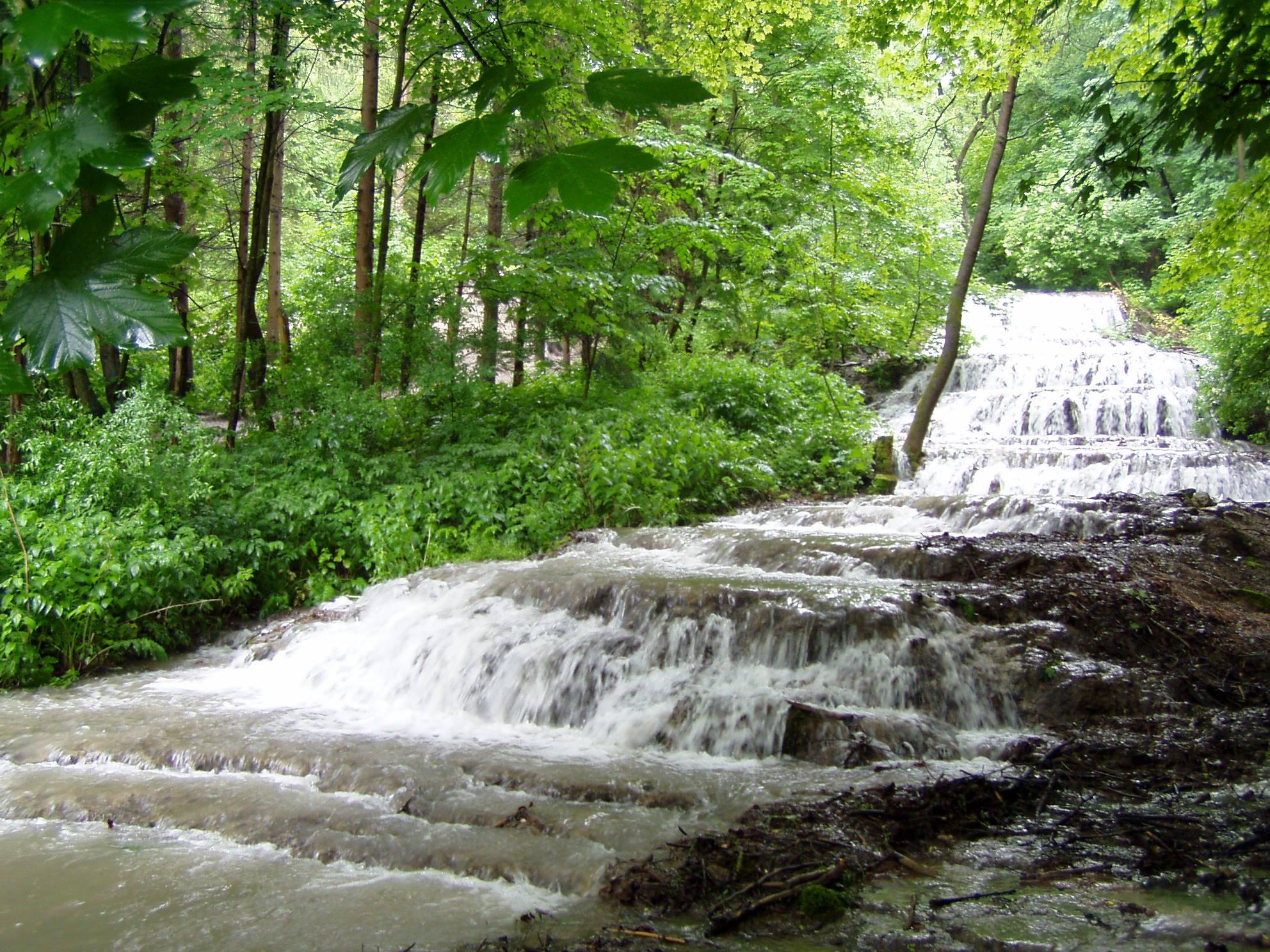 Gyorsfolyású hegyi patak - a tisztaság szimbóluma