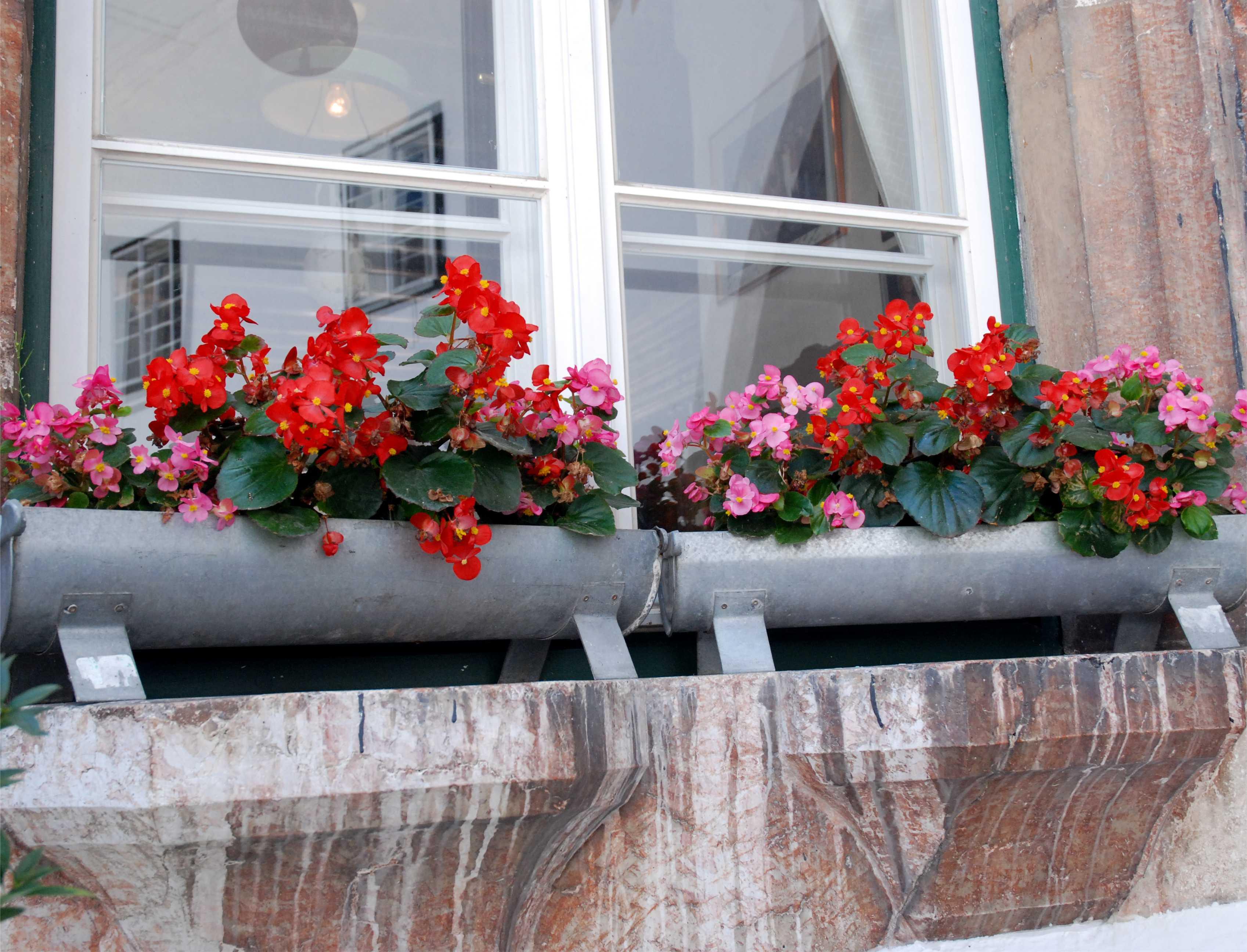 Régi ereszcsatornából csinos virágláda készíthető