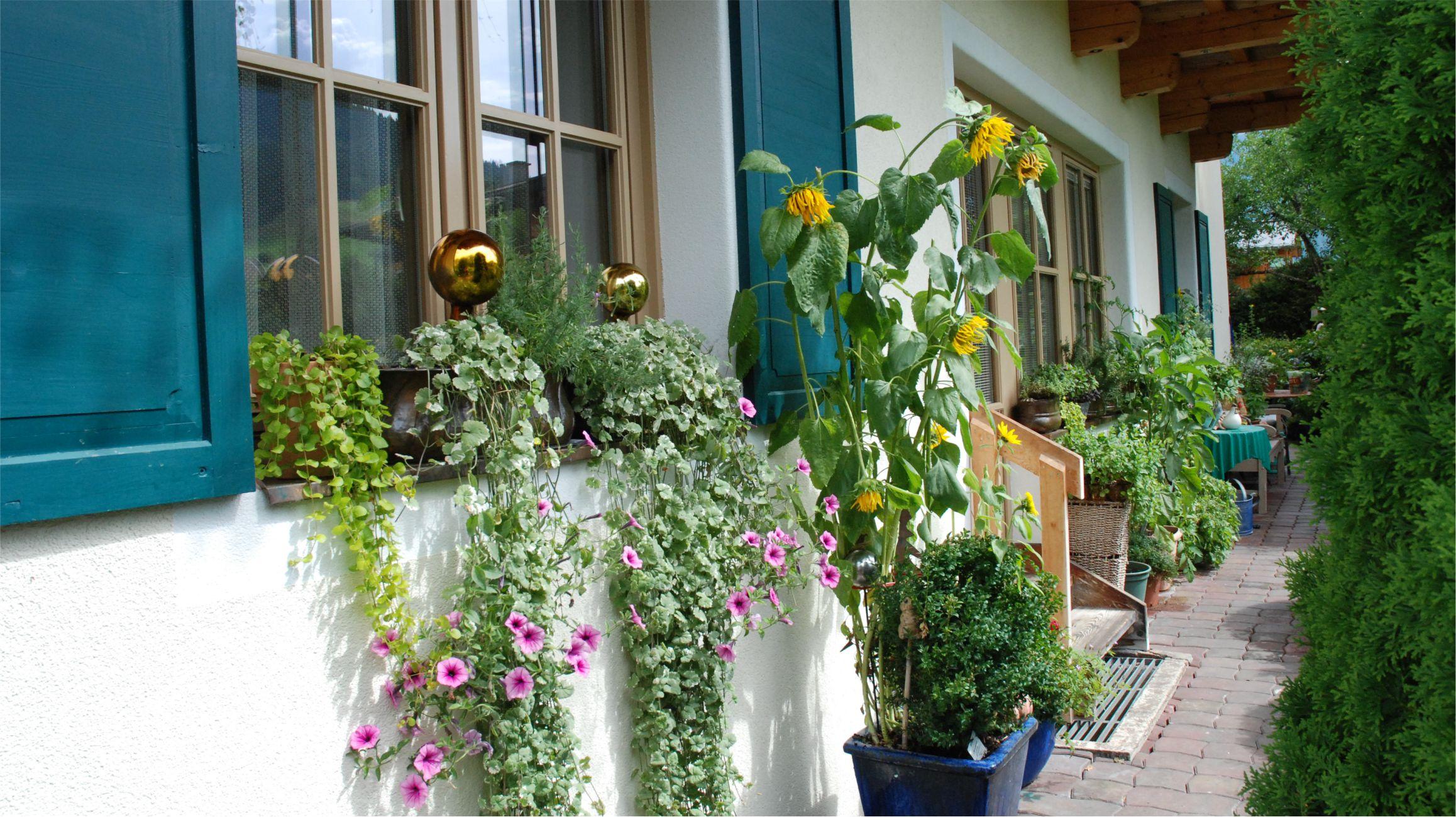 """Ez ugyan """"csak"""" egy mellékbejárat, ami összeköti a házat a kerttel, de még ennek a szépítésére is érdemes odafigyelni..."""