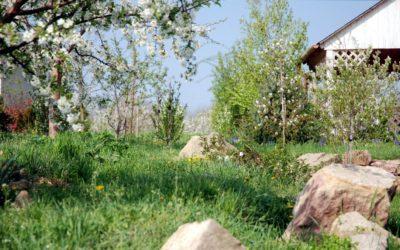 A tavaszi nagytakarítás nem nyűg, hanem lehetőség!