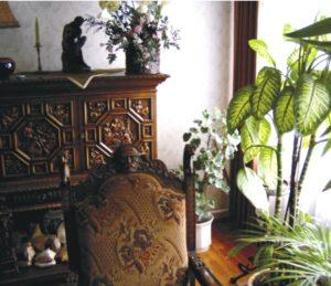 Délnyugaton legyenek a nagy növényeink, nehéz bútorok és részesítsük előnyben a föld színeit