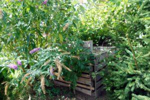 A kert délnyugati része legyen buja, és legyenek ott nagy fák. Nagyon jó helyen van délnyugaton a komposztáló is.