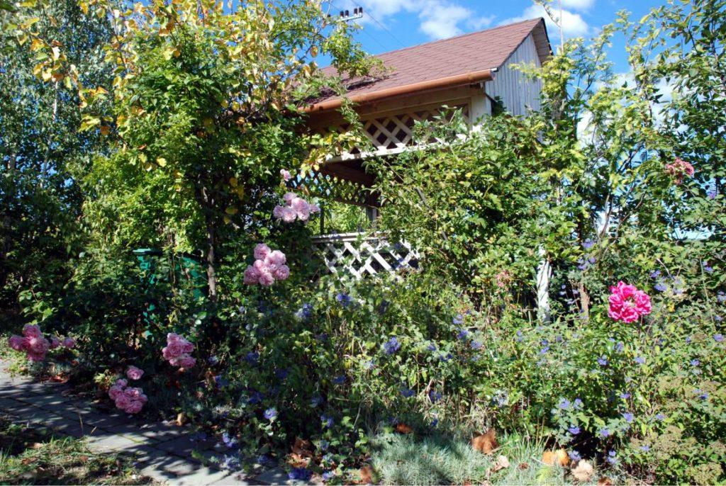 A kertről se feledkezz meg! Az évszakok változásával a kerten látszik leginkább a kezünk és a természet nyoma...