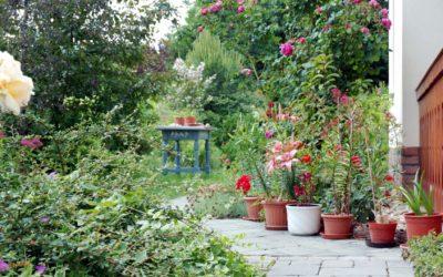 Kert – az egészség és a környezetvédelem mikrokozmosza
