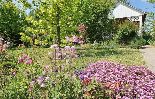 Mire figyeljünk, ha Vaszati kertet szeretnénk?