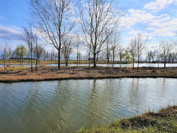 A vízfelületek legjobb helye a kert északi, északkeleti és keleti részén van. Ha a házunk közelében van egy nagyobb tó, az is akkor kedvező, ha a telkünktől északra, északkeletre vagy keletre van. (A képen a szülővárosom egyik