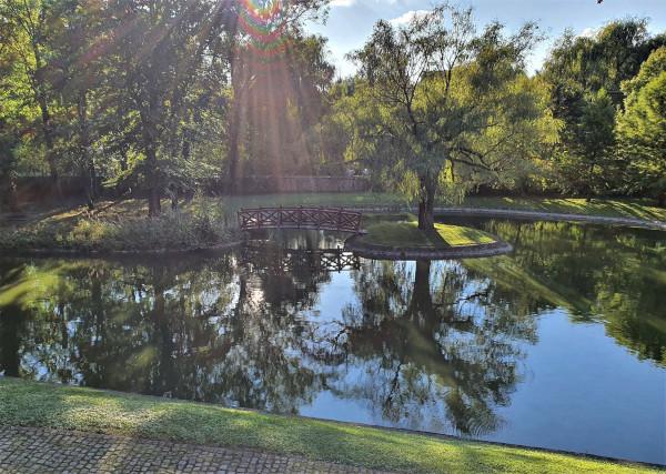 A tiszta vízfelület a kastélyparkoknak is az éke. Fontos, hogy kedvező égtájra kerüljön.